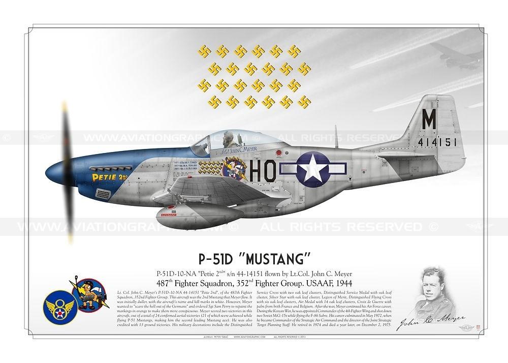 p-51d-mustang-petie-2nd-usaaf-tk-01.jpg